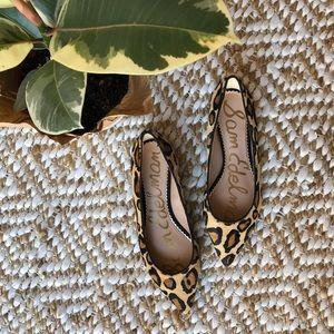 Shoes - Sam Edelman Leopard Calf Hair Flats